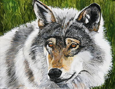 Painting - Grey Wolf by Betty-Anne McDonald