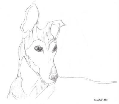 Keith Richards - Greyhound by George Pedro