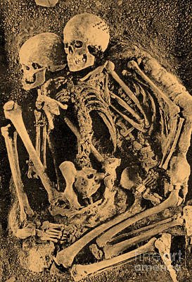 Photograph - Grimaldi Skeletons by Science Source