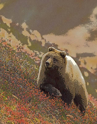 Portaits Digital Art - Grizzly Bear In Berries- Abstract by Tim Grams