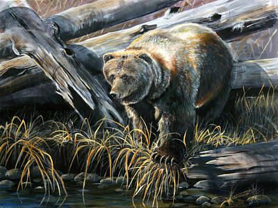 Grizzly Pond Art Print by Scott Thompson