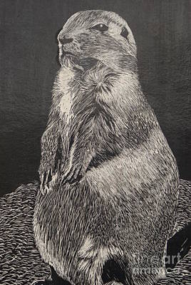 Groundhog Drawing - Groundhog by William Ohanlan