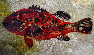 Mixed Media - Grouper by Patricia Januszkiewicz