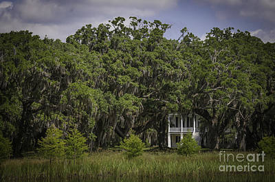 Photograph - Grove Plantation Big House by David Waldrop