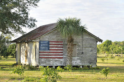 Grove Shack With Flag Art Print by Bradford Martin