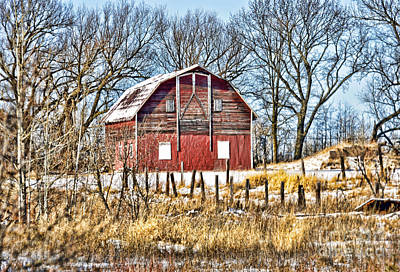 Photograph - Grown Up Red by Whispering Feather Gallery