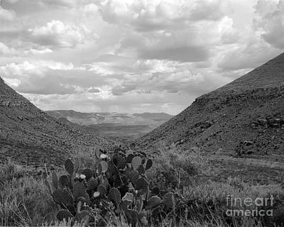 Photograph - Guadalupe Mountain View by David Chalker