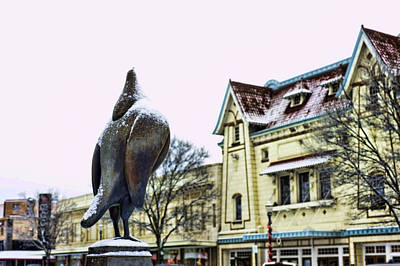 Photograph - Guard Pigeon And Liberty Theater by Dan McManus