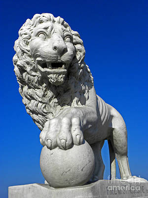 Photograph - Guardian Lion by Elizabeth Hoskinson
