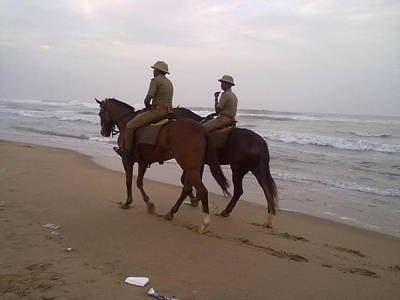 Photograph - Guardians On The Beach by Asha Sudhaker Shenoy