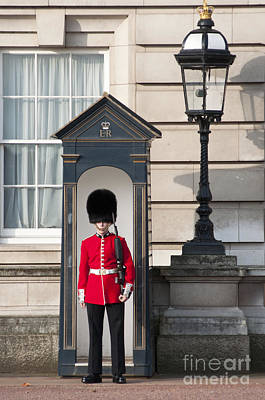 Buckingham Palace Photograph - Guarding The Palace by Andrew  Michael