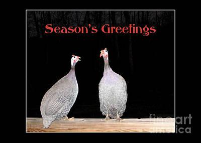 Photograph - Guineas Season's Greetings by Renee Trenholm