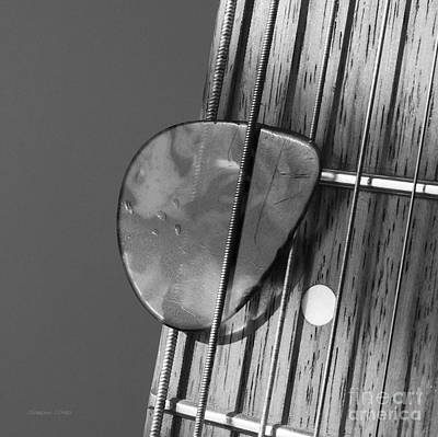 Dappled Light Photograph - Guitar Frets And Pick by Gordon Wood
