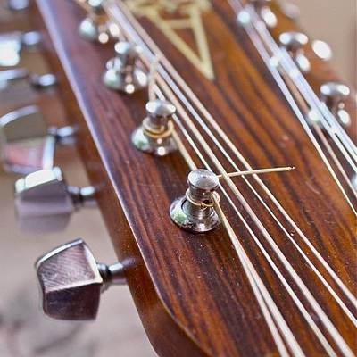 String Instruments Photograph - Guitar Head by Justin Connor