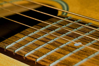 Photograph - Guitar Strings by C Ribet