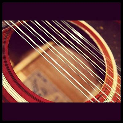 String Instruments Photograph - Guitar Strings by Justin Connor