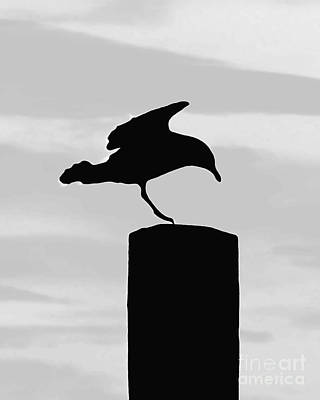 Digital Art - Gull Silhouette by Dale   Ford
