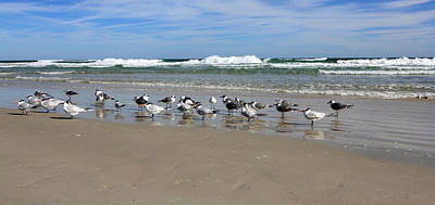 Photograph - Gulls And Waves II by Mary Haber