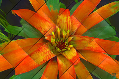 Digital Art - Guzmania Ultra by Manny Lorenzo
