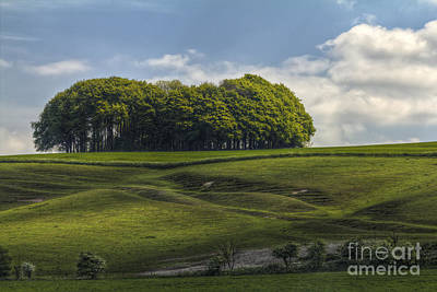 Photograph - Hackpen Hill by Clare Bambers
