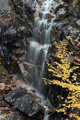 Maine Photograph - Hadlock Brook Falls by Juergen Roth