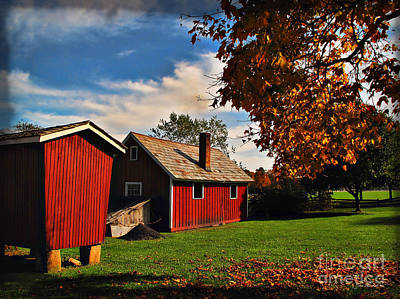 Photograph - Hale Farm In Autumn by Joan  Minchak