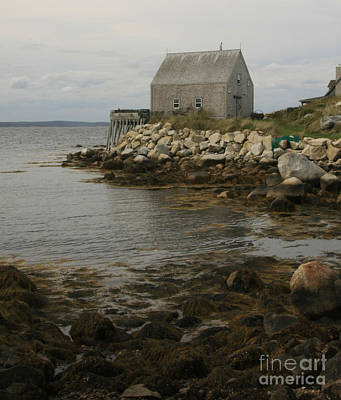 Photograph - Halifax Cove by Tom Griffithe