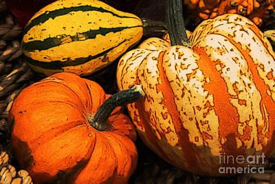 Photograph - Halloween Colors by Jutta Maria Pusl