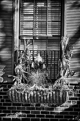 Photograph - Halloween Decoration In Downtown Philadelphia by Val Black Russian Tourchin