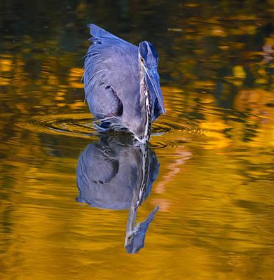 Halloween Heron Art Print by Brian Stevens