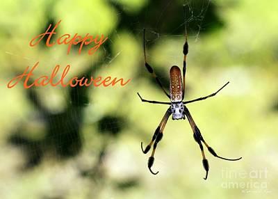 Photograph - Halloween Spider Card by Sabrina L Ryan
