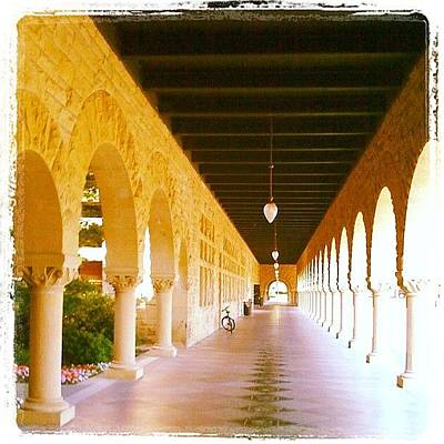 Apple Wall Art - Photograph - Halls Of Learning - Stanford University by Anna Porter
