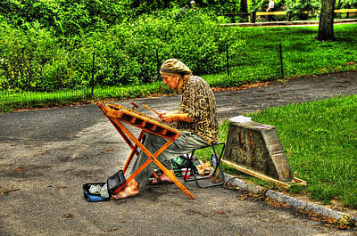 Hammered Dulcimer Musician In Central Park Original by Randy Aveille
