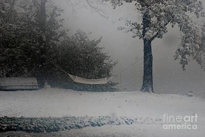 Warren Connecticut Photograph - Hammock Snow In Autumn by Andrea Simon