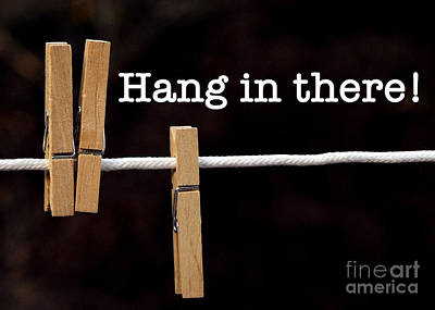 Photograph - Hang In There by Nancy Greenland
