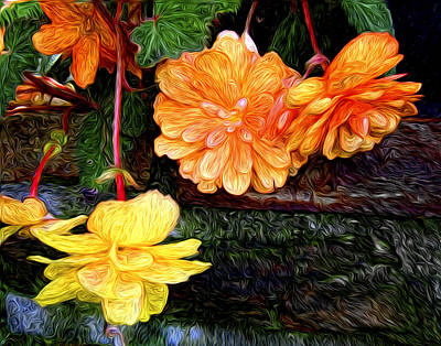Photograph - Hanging Begonia by Tammy Wetzel