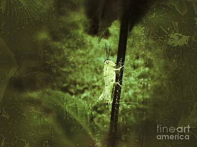 Photograph - Hanging On by Christy Bruna