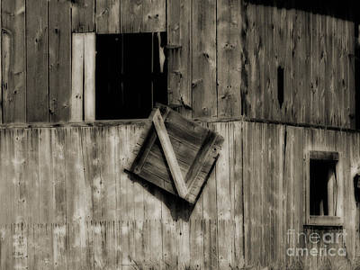 Photograph - Hanging On by Ms Judi