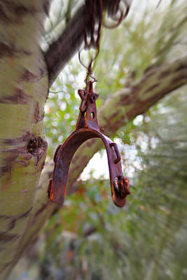 Photograph - Hanging Spur by Jo Sheehan