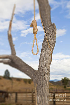 Hangman Noose In A Tree Print by Bryan Mullennix