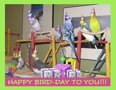 Happy Bird-day Art Print