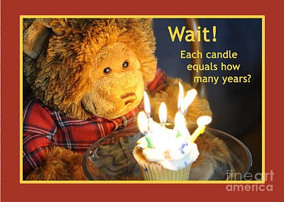 Photograph - Happy Birthday Bear by Nancy Greenland