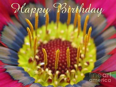 Season Photograph - Happy Birthday by Tina Marie