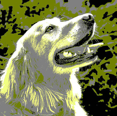 Dog Pop Art Photograph - Happy Dog by Marilyn Hunt