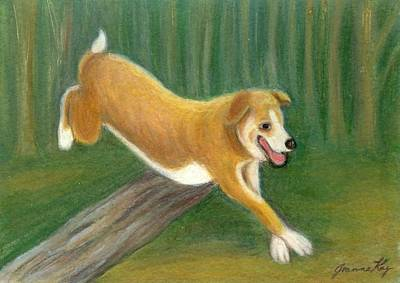 Painting - Happy Dog Running by Jeanne Kay Juhos
