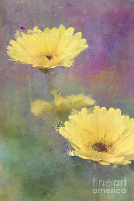 Gerbera Daisy Digital Art - Happy Faces by Betty LaRue