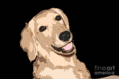 Photograph - Happy Golden Retriever Isolated by Susan Stevenson