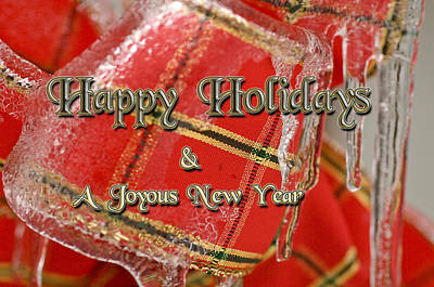 Photograph - Happy Holidays Joyous New Year by Michael Flood