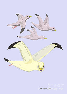 Happy Seagulls Art Print by Fred Jinkins