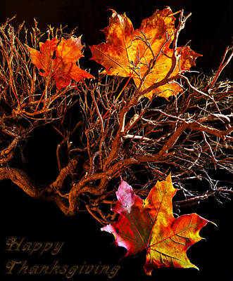 Photograph - Happy Thanksgiving by Beverly Cash